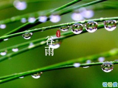 2019谷雨节气朋友圈早安心语谷雨美好心情说说发布时间:2019-04-20