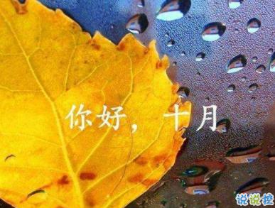 2019十月朋友圈经典说说大全十月置顶的精致句子发布时间:2